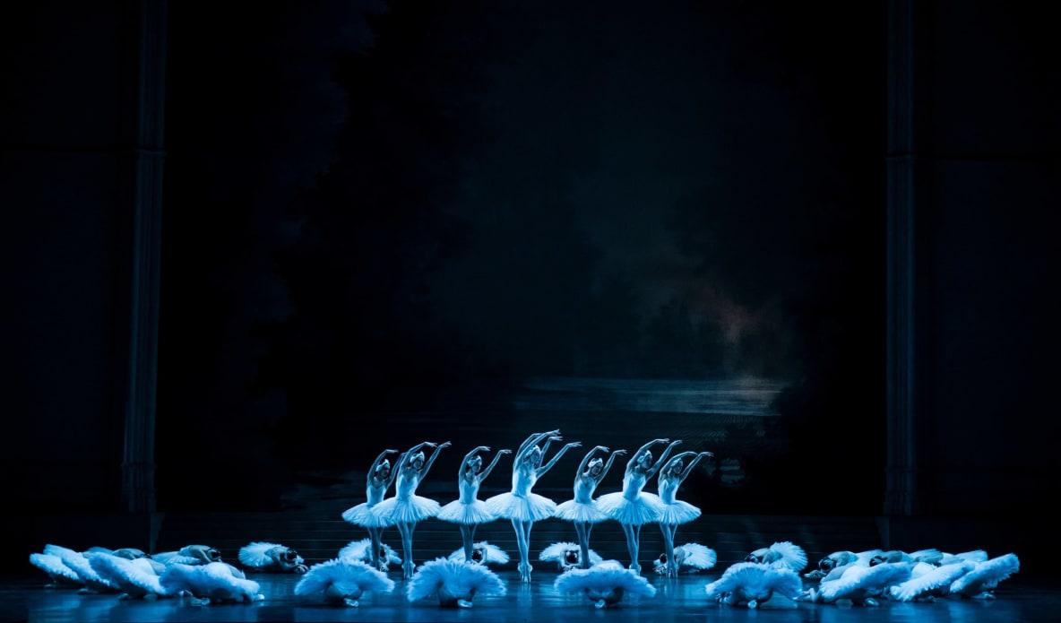 Le Lac des cygnes (replay)